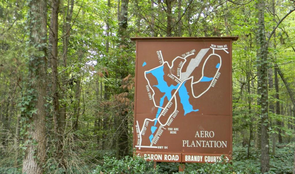 Aero Plantation (3)
