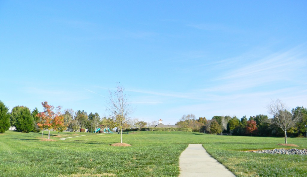 Neighborhood Field behind Amenity Center