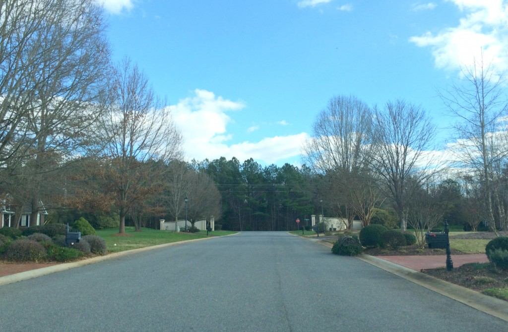 Established Weddington Neighborhoods